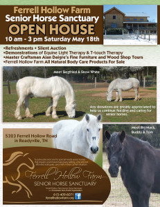 Open-House-Flyer-proof2 (2)